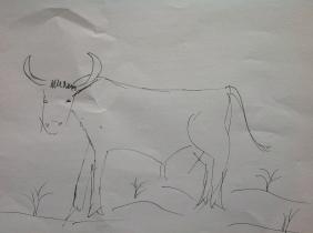 Dibujo Toro